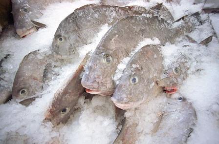 В Новосибирске забраковали крупную партию рыбы